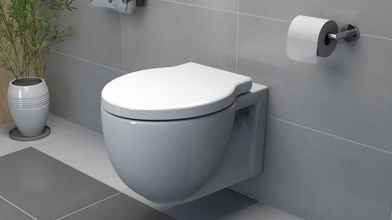 Wall Hung Toilet Reviews